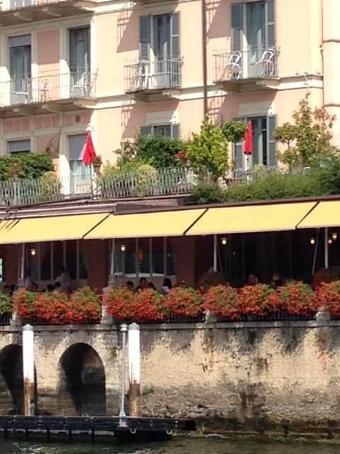 Bellagio geraniums