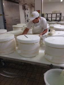 Parmigiano Reggianno production