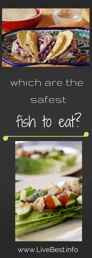 which are the safest fish to eat? Real food, deliciously. www.LiveBest.info