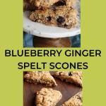 blueberry ginger spelt scones on a tray