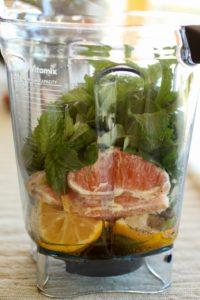 Citrus Herb ingredients in blender