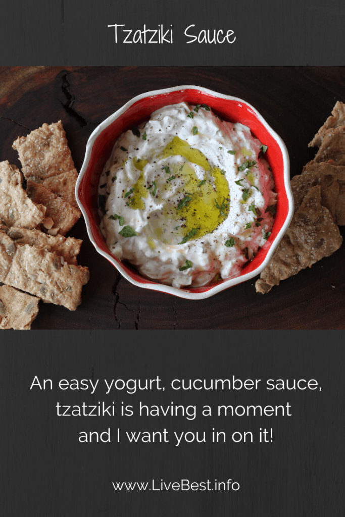 bowl of tzatziki with crackers