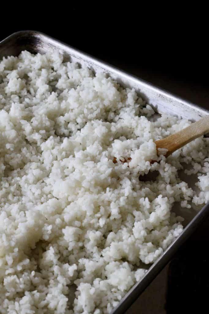 sushi rice spread on baking sheet